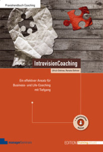 introvisioncoaching